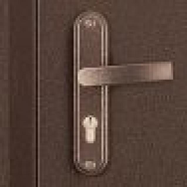 Дверь стальная СПЕЦ